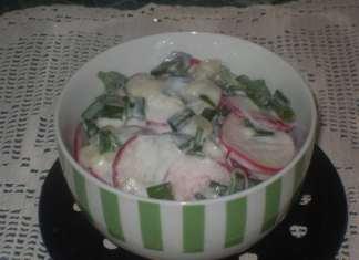 Salata sa rotkvicama i mladim lukom