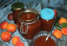 Marmelada od kajsija