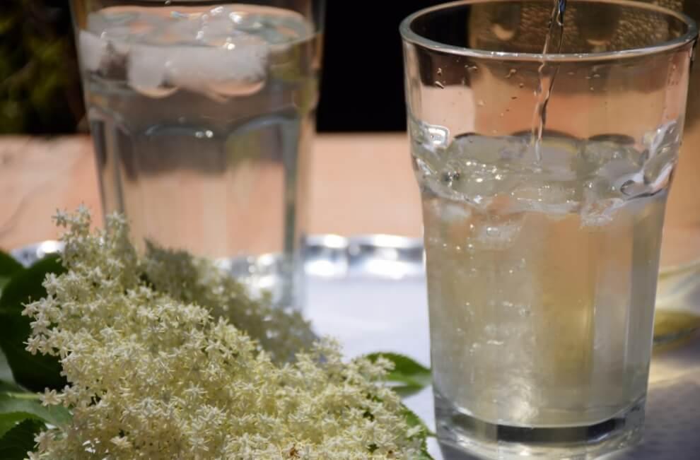 Kako napraviti domaći sok ili sirup od zove